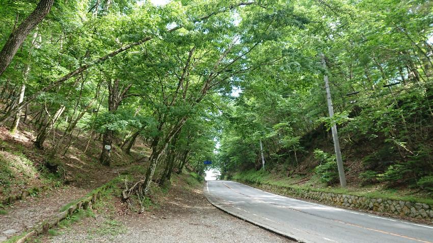 木漏れ日ツーリング~大菩薩・秋山