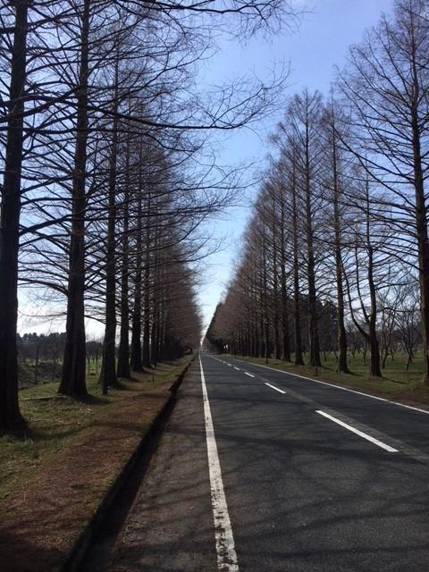 琵琶湖周回ツーリング♪