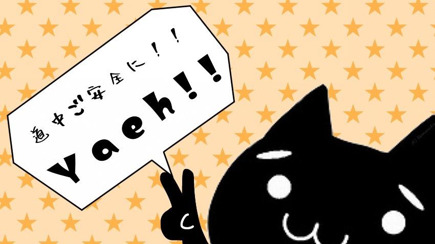 v(・∀・)yaeh!